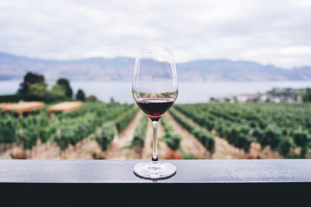 Glass of red wine in front of vineyard