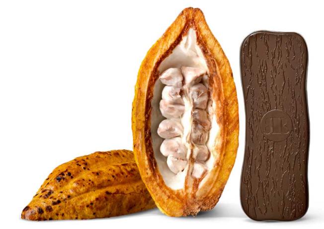 Single origin chocolate bar with cacao pod